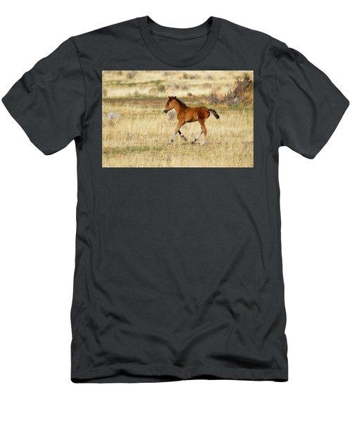 Cute Wild Bay Foal Galloping Across A Field Men's T-Shirt (Athletic Fit)