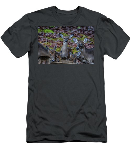 Deer Gathering Men's T-Shirt (Athletic Fit)