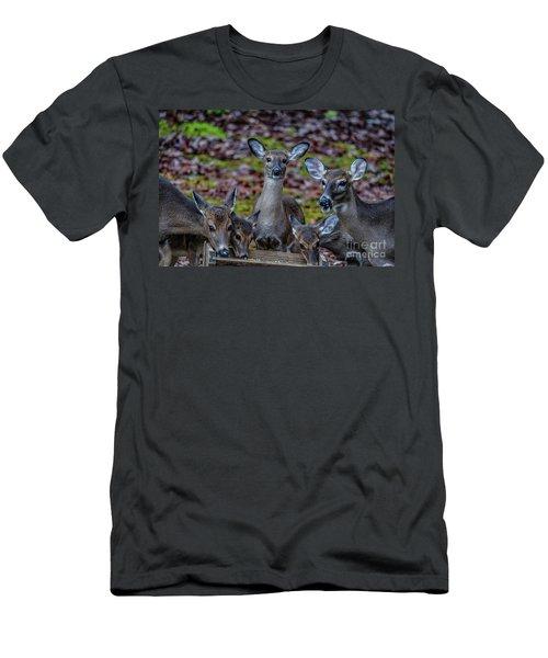 Deer Gathering Men's T-Shirt (Athletic Fit)