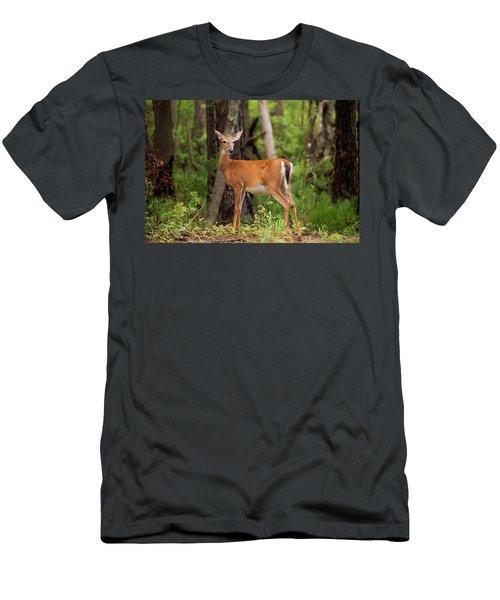 Doe, A Deer, A Female Deer Men's T-Shirt (Athletic Fit)