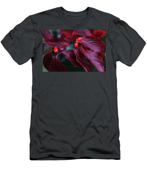 Men's T-Shirt (Athletic Fit) featuring the photograph Dogwood Leaves In The Fall by Trina Ansel