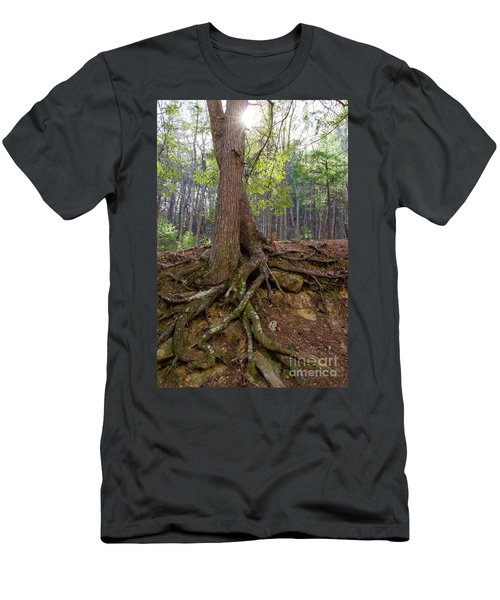 Down In Her Roots Men's T-Shirt (Athletic Fit)