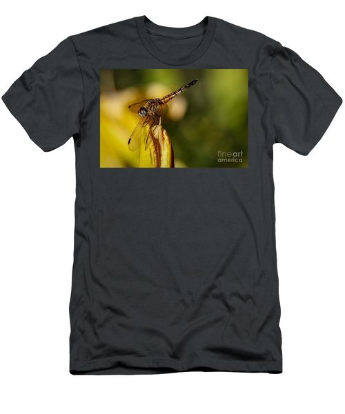 Dragonfly In The Limelight Men's T-Shirt (Athletic Fit)