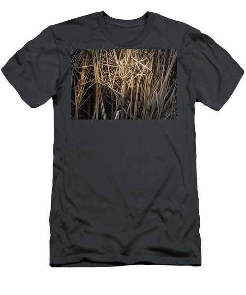 Dried Wild Grass II Men's T-Shirt (Athletic Fit)