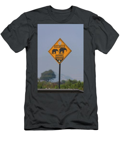 Elephant Crossing Men's T-Shirt (Athletic Fit)