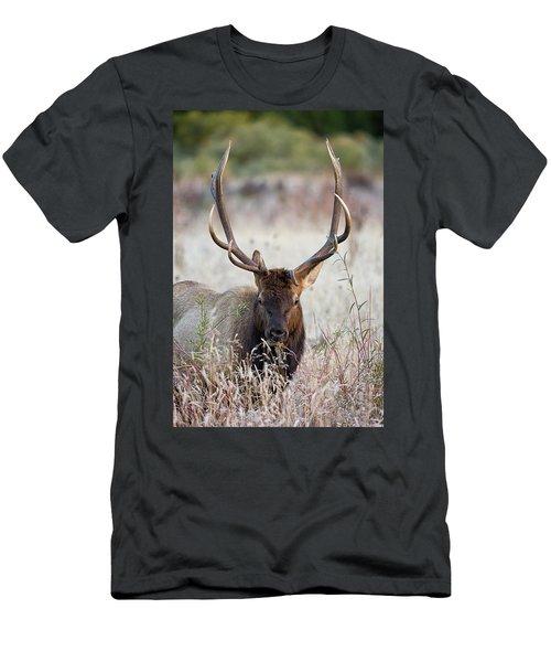 Elk Portrait Men's T-Shirt (Athletic Fit)