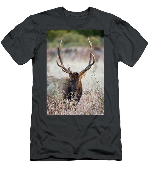 Elk Portrait Men's T-Shirt (Athletic Fit)