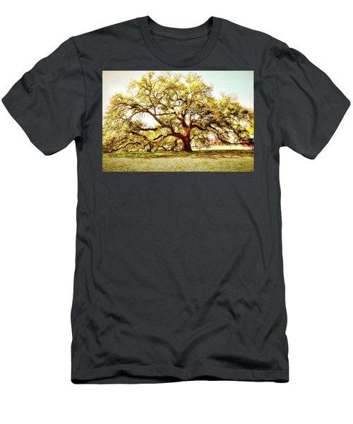 Emancipation Oak Men's T-Shirt (Athletic Fit)