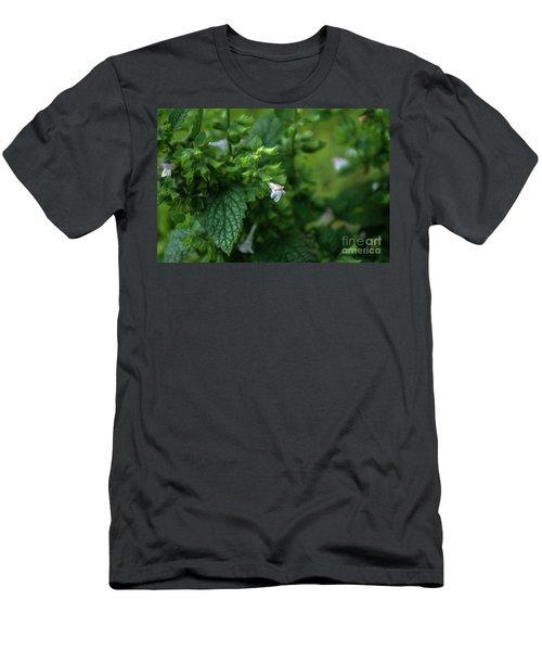 Euphrasia Men's T-Shirt (Athletic Fit)
