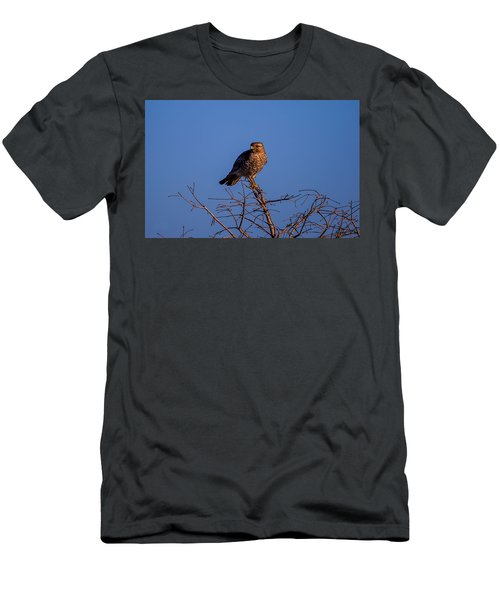 Evening Look Out Men's T-Shirt (Athletic Fit)