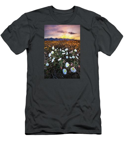 Evening With Primroses Men's T-Shirt (Athletic Fit)