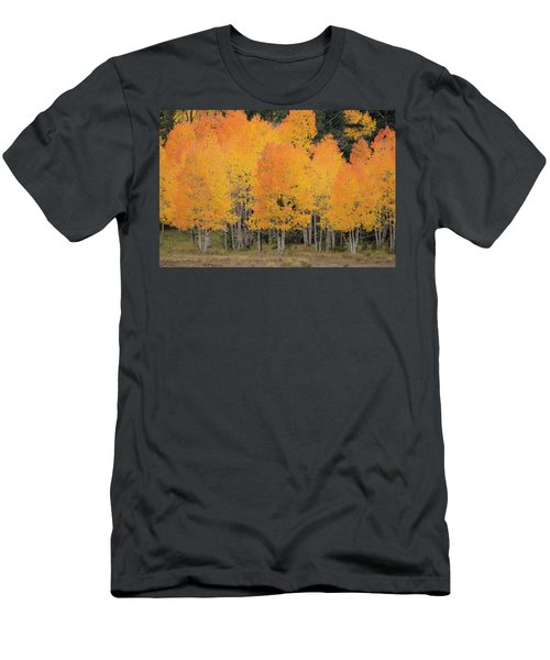 Fall Has Arrived Men's T-Shirt (Athletic Fit)