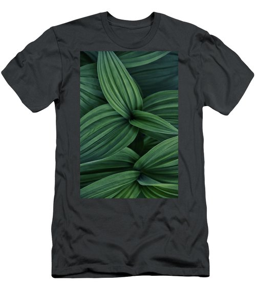False Hellebore Plant Abstract Men's T-Shirt (Athletic Fit)