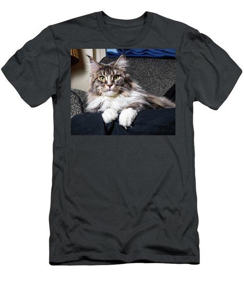 Feline Beauty Men's T-Shirt (Athletic Fit)