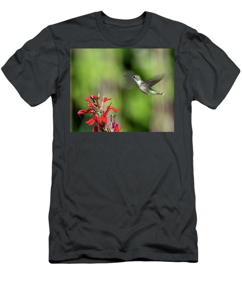 Female Ruby-throated Hummingbird Dsb0320 Men's T-Shirt (Athletic Fit)