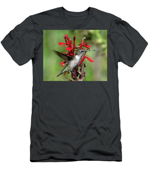 Female Ruby-throated Hummingbird Dsb0325 Men's T-Shirt (Athletic Fit)