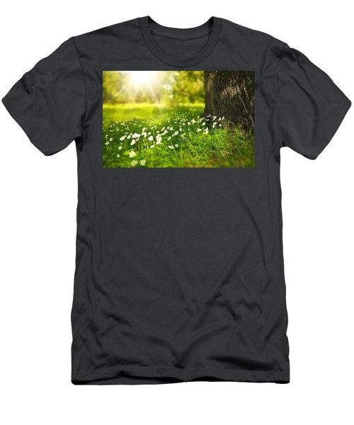 Field Of Daisies Men's T-Shirt (Athletic Fit)