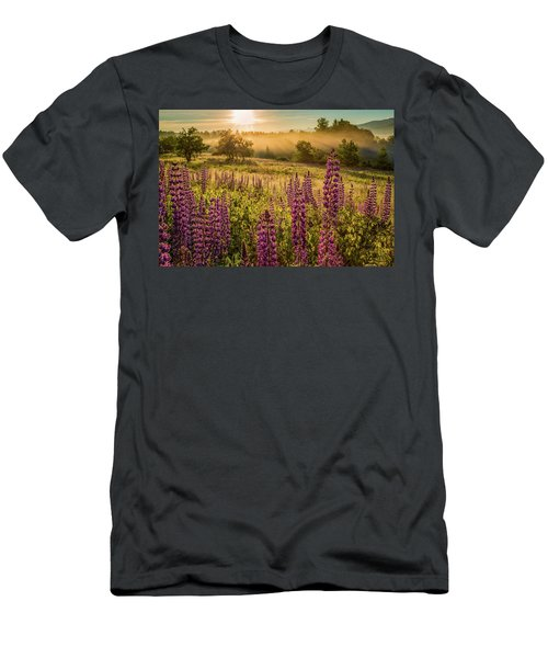 Fields Of Lupine Men's T-Shirt (Athletic Fit)