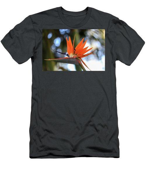 Flight To Paradise Men's T-Shirt (Athletic Fit)