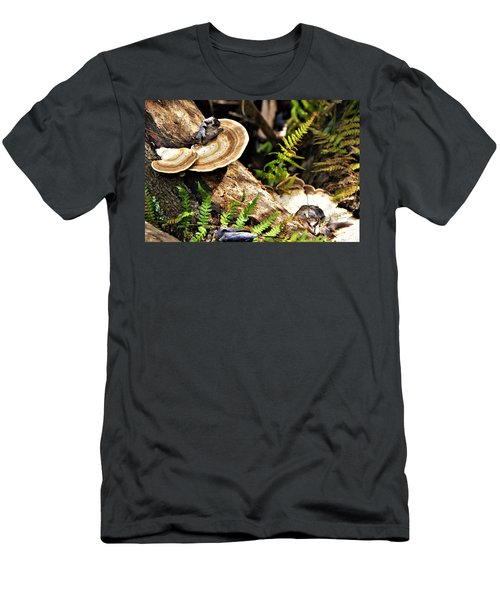 Florida Forest Men's T-Shirt (Athletic Fit)