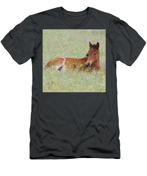 Foal In The Flowers Men's T-Shirt (Athletic Fit)