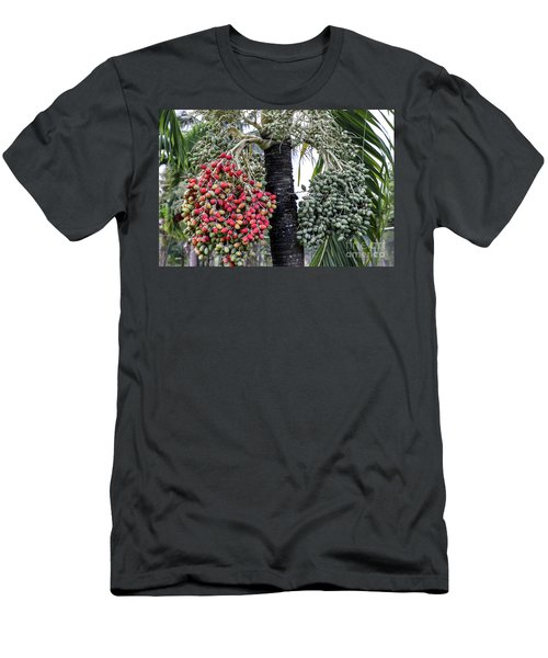 Fruity Palm Tree  Men's T-Shirt (Athletic Fit)
