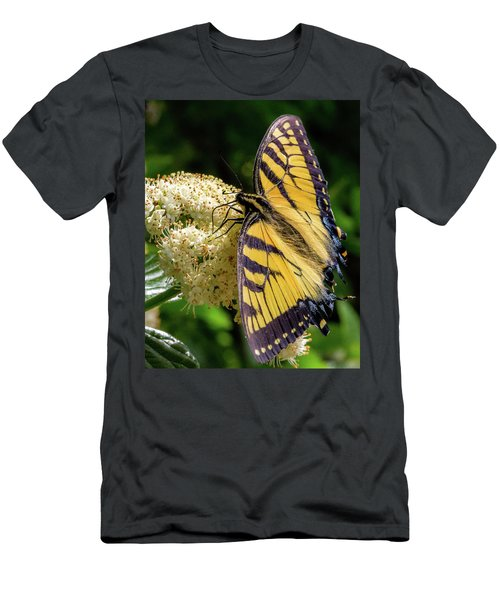 Fuzzy Butterfly Men's T-Shirt (Athletic Fit)