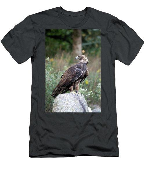 Golden Eagle On Rock 92515 Men's T-Shirt (Athletic Fit)