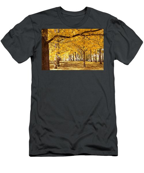 Golden Ginkgo Men's T-Shirt (Athletic Fit)