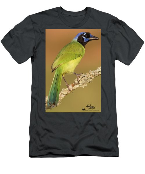 Gorgeous Green Jay Men's T-Shirt (Athletic Fit)