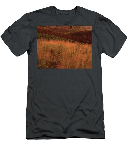 Grasses And Sugarcane, Trinidad Men's T-Shirt (Athletic Fit)