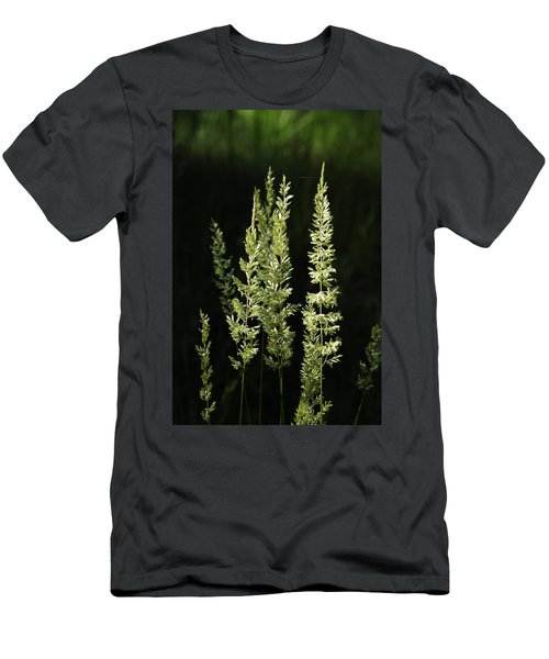 Grasses Men's T-Shirt (Athletic Fit)