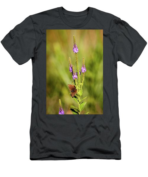 Gray Copper On Blazing Star Men's T-Shirt (Athletic Fit)