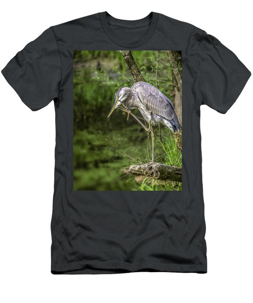 Great Blue Heron Itch Men's T-Shirt (Athletic Fit)