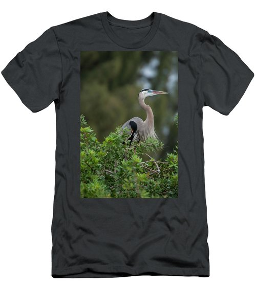 Great Blue Heron Portrait Men's T-Shirt (Athletic Fit)