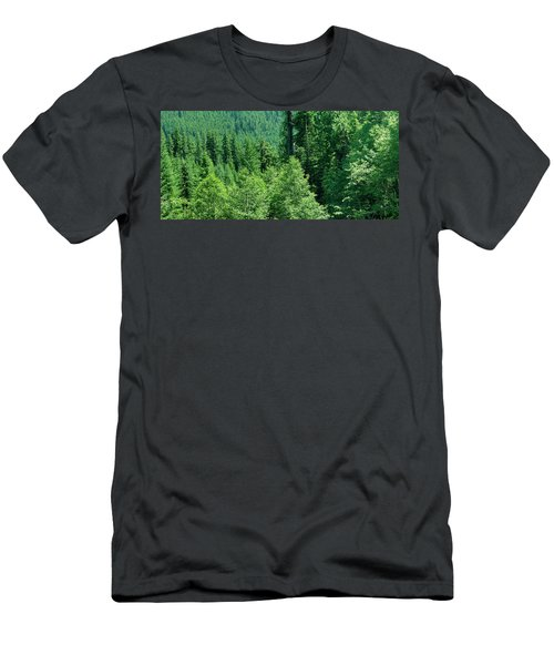 Green Conifer Forest On Steep Hillside  Men's T-Shirt (Athletic Fit)