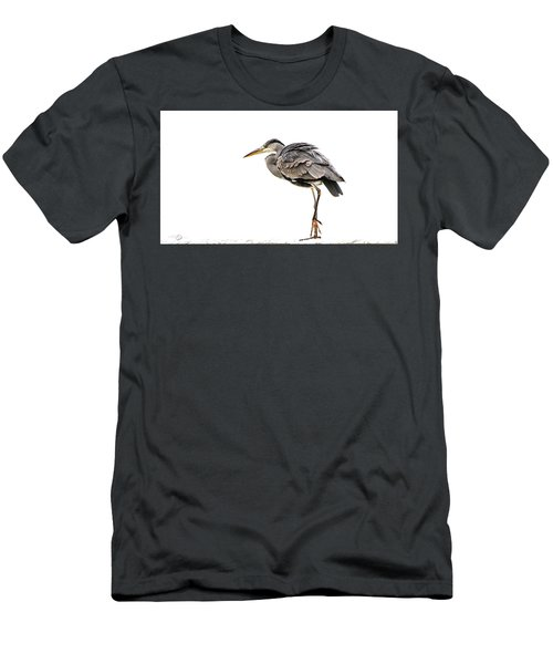 Grey Heron On Snow Men's T-Shirt (Athletic Fit)