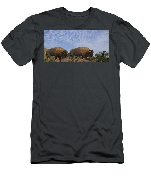Group Of Bison Walking Against Rocky Mountains  Men's T-Shirt (Athletic Fit)