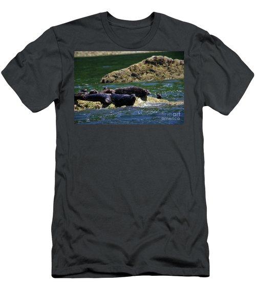 Harbor Seals On The Rocks Men's T-Shirt (Athletic Fit)