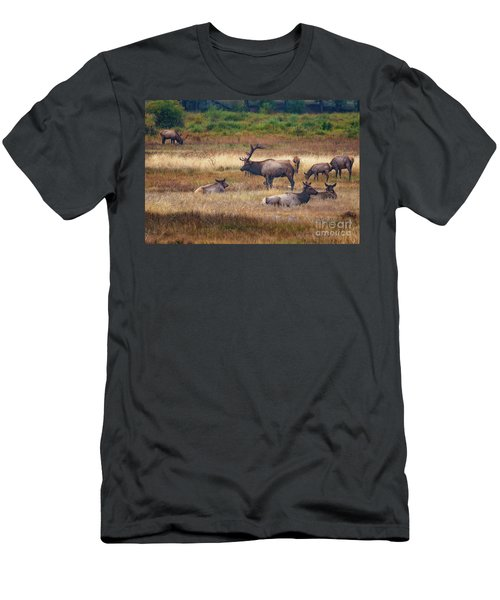 Men's T-Shirt (Athletic Fit) featuring the photograph Harem  by Bitter Buffalo Photography