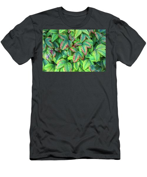 Harmony In The Garden Men's T-Shirt (Athletic Fit)