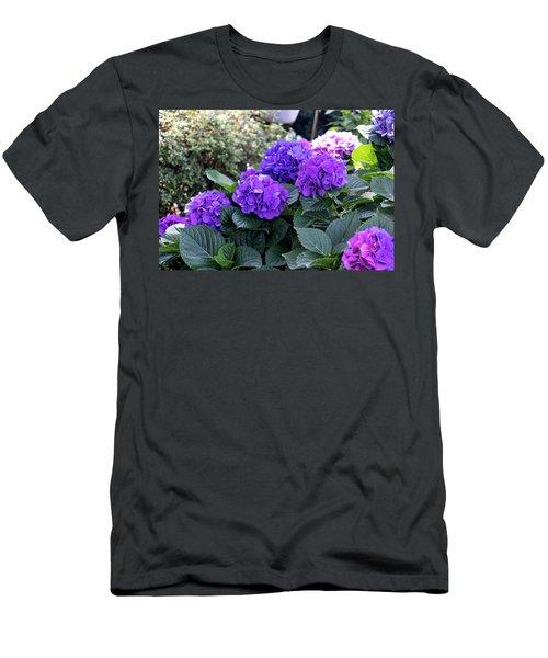 Heavenly Hydrangeas  Men's T-Shirt (Athletic Fit)