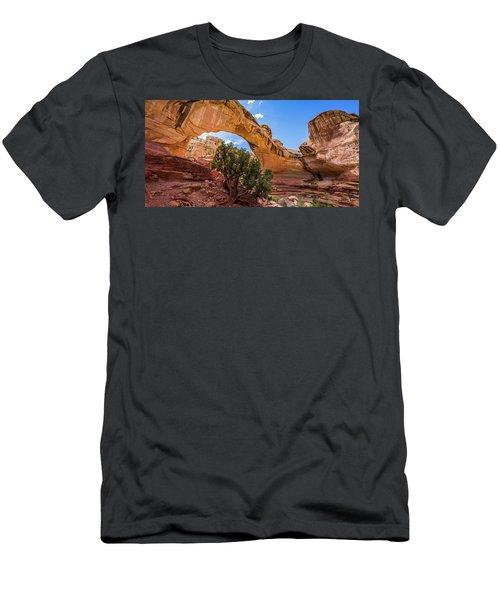 Hickman Natural Bridge Men's T-Shirt (Athletic Fit)