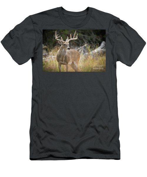 Hill Country Whitetail Men's T-Shirt (Athletic Fit)