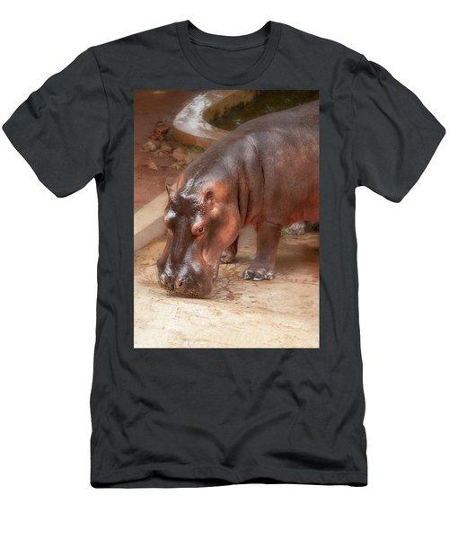 Hippopotamus Men's T-Shirt (Athletic Fit)