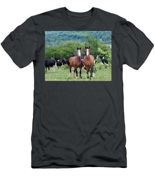 Horses And Cows.  Men's T-Shirt (Athletic Fit)