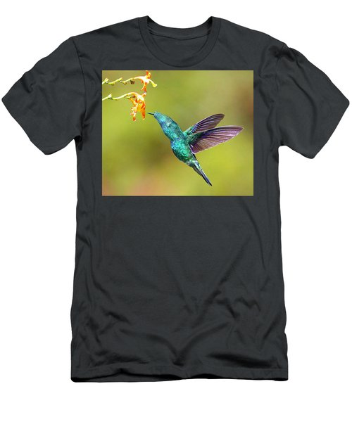 Humhum Bird Men's T-Shirt (Athletic Fit)