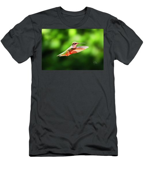 Hummingbird Flying Men's T-Shirt (Athletic Fit)