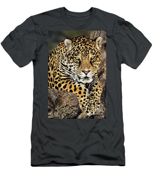Jaguar Portrait Wildlife Rescue Men's T-Shirt (Athletic Fit)