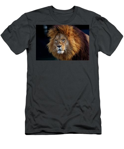 King Lion Men's T-Shirt (Athletic Fit)